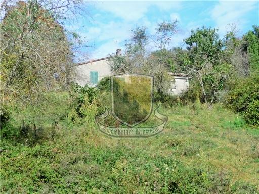 VILLA / VILLETTA / TERRATETTO terratetto in  vendita a IESA - MONTICIANO (SI)