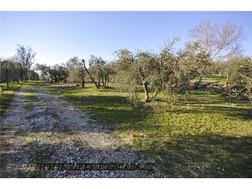 Terreno Agricolo in Vendita a Bagno a Ripoli
