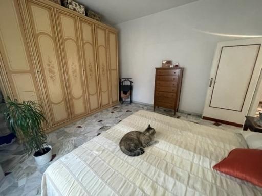 Appartamento in vendita a Firenze zona Monticelli - immagine 14