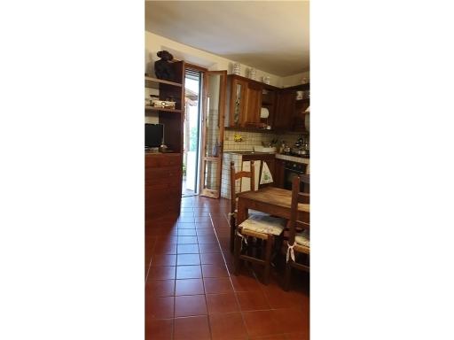 Villa / Villetta / Terratetto in vendita a Firenze zona San quirico di legnaia - immagine 59