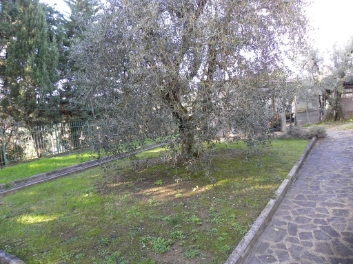Villa / Villetta / Terratetto in vendita a Scandicci zona Centro - immagine 4