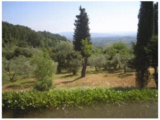 Colonica in vendita a Scandicci zona Mosciano - immagine 5