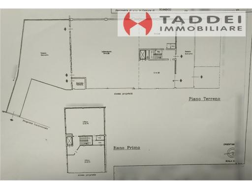 TADDEI IMMOBILIARE - Rif. 5/0129