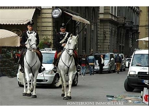 Fondo / Negozio / Ufficio in affitto a Firenze zona Piazza santa maria novella-piazza ognissanti - immagine 2