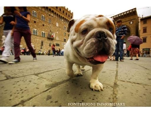 Fondo / Negozio / Ufficio in vendita a Firenze zona Piazza pitti-ponte vecchio-costa san giorgio - immagine 2