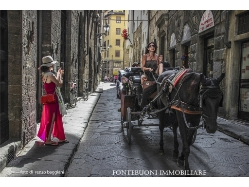 Attività commerciale in vendita a Firenze zona Via pisana - immagine 8