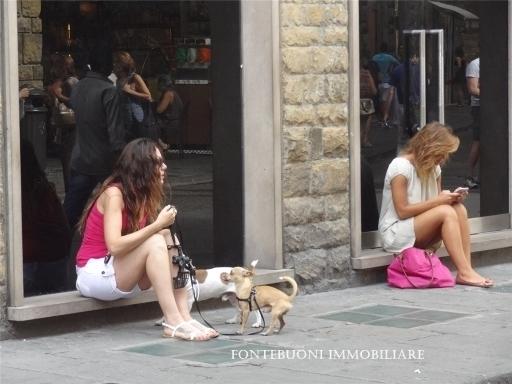 Attività commerciale in vendita a Sesto fiorentino zona Togliatti - immagine 1