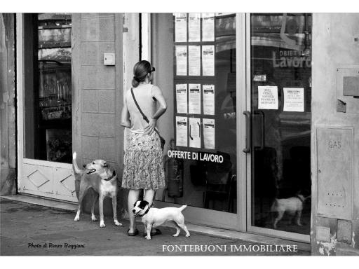 Attività commerciale in vendita a Firenze zona Dalmazia - immagine 4