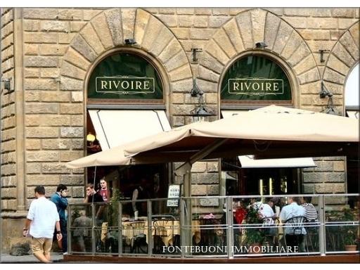 Attività commerciale in affitto a Firenze zona Porta san frediano-piazza santo spirito - immagine 2