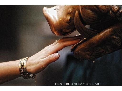 Attività commerciale in vendita a Firenze zona Porta san frediano-piazza santo spirito - immagine 6