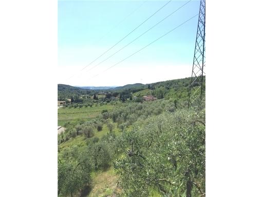 Terreno Agricolo in Vendita a Montelupo Fiorentino