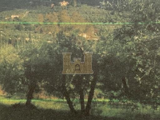IL MASTIO IMMOBILIARE - Rif. 3/0025