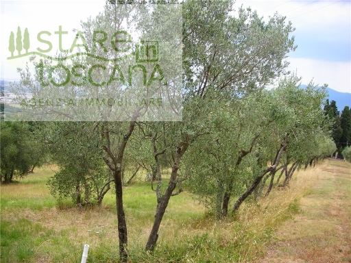 GENERICO terreno agricolo in  vendita a SAN MARTINO ALLA PALMA - SCANDICCI (FI)
