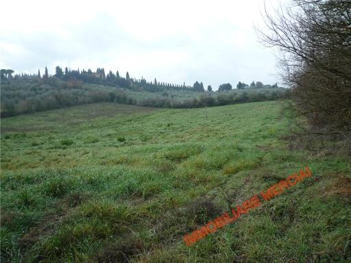 Terreno Agricolo in vendita a Bagno a Ripoli, 9999 locali, zona Località: GRASSINA, prezzo € 55.000   Cambio Casa.it