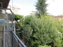 APPARTAMENTO civile abitazione in  affitto a VINGONE - SCANDICCI (FI)